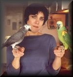 Hanna with Jocko, the African Gray and Rex, the Blue-Fronted Amazon. Both birds owned by client, J.Wolfe